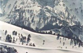 1338277076_zigana-kayak-merkezi